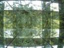 pines-through-Cabinet-jpg